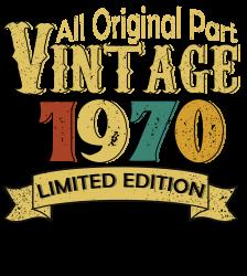 All Original Parts Vintage 1970 Limited Edition T-shirt